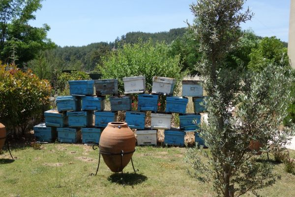 bijenkorven-honey-house-marmaris9B1B7FB1-8401-CE06-2BEB-2C69A27AD269.jpg