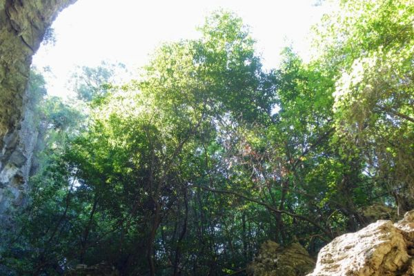 nimara-cave-paradise-islandDA3D737A-2BAA-E485-4E87-DC4CF98717AC.jpg