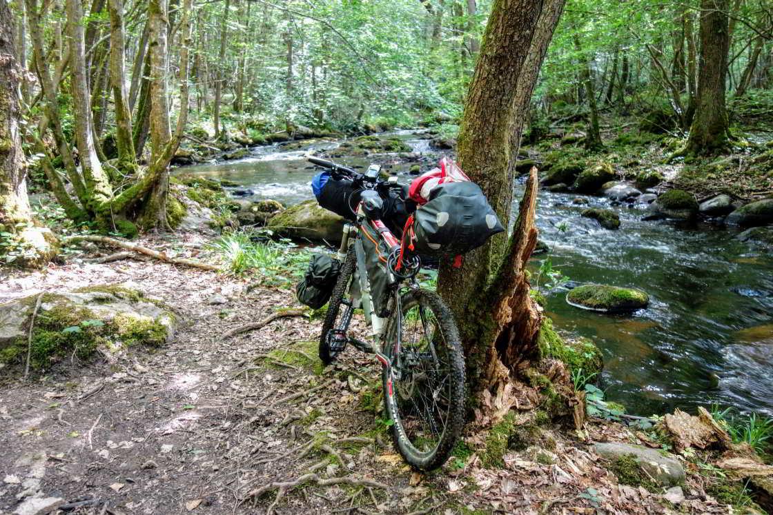 mountainbike in het bos langs een rivier