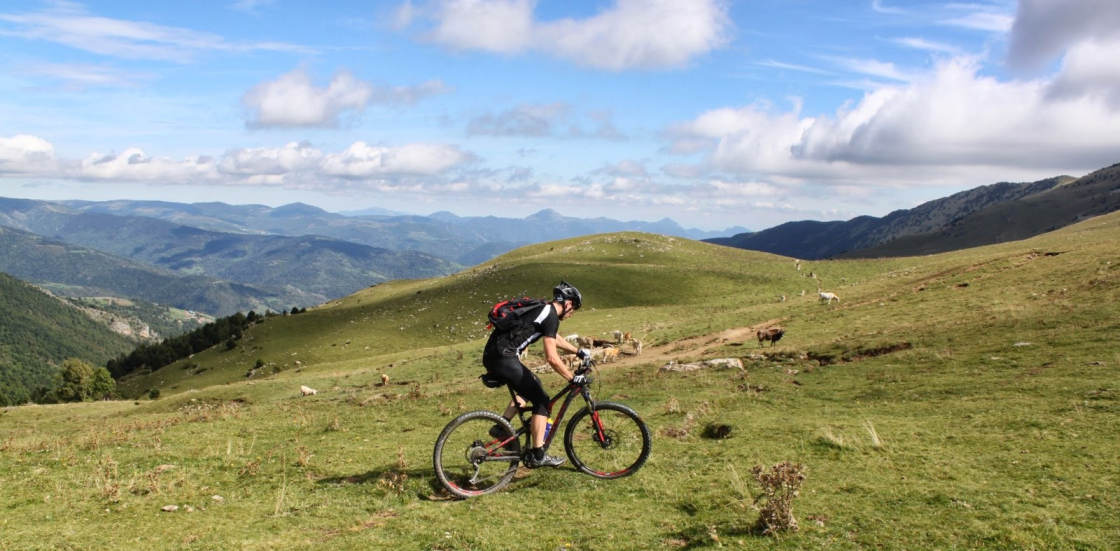 mountainbiker hoog in alpenweide