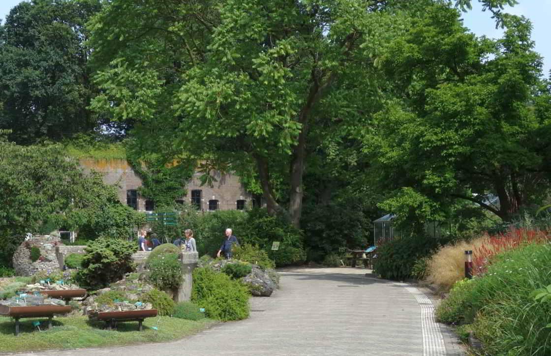 Bezoekers van de Botanische Tuinen