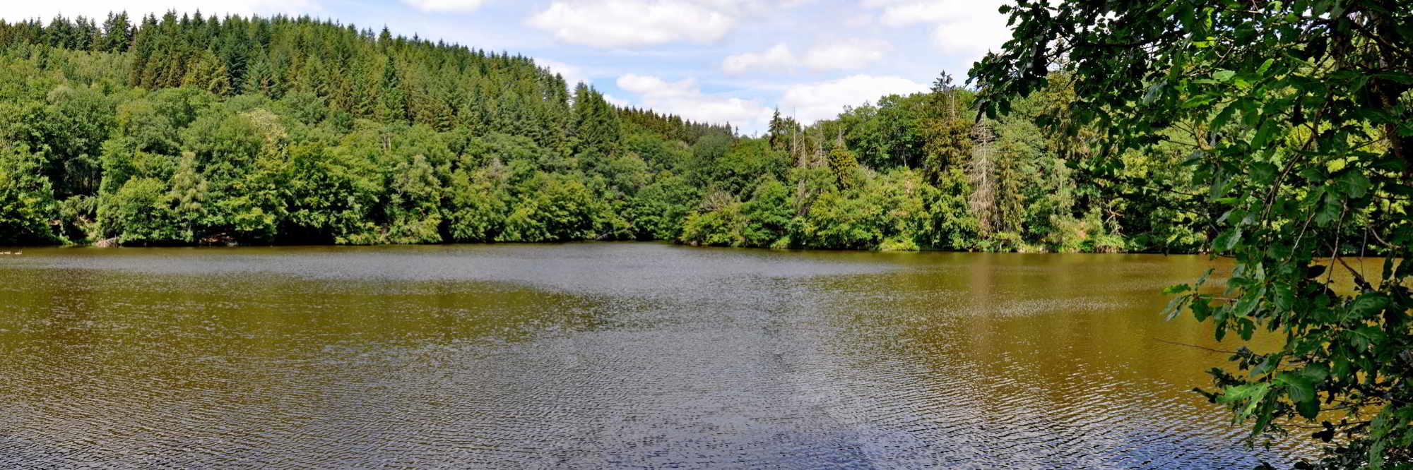 headerfoto eislek trail