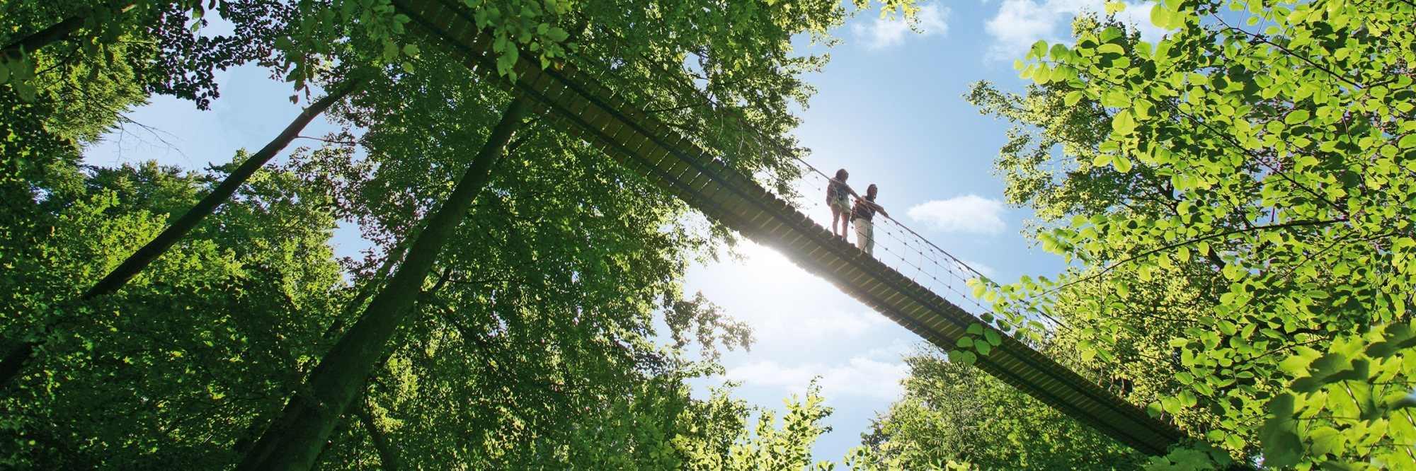 headerfoto ©Rothaarsteigverein-Björn-Hänssler-Hängebrücke-bei-Kühhude