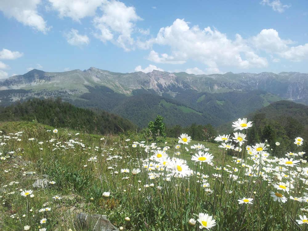 Komovi NP ligt in Montenegro