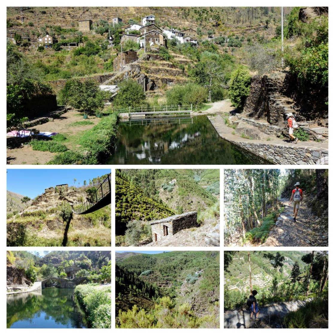 collage van beelden