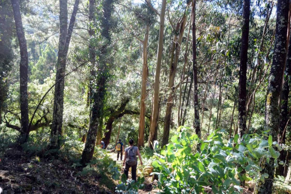 Wandelaar in de Portugese bergen