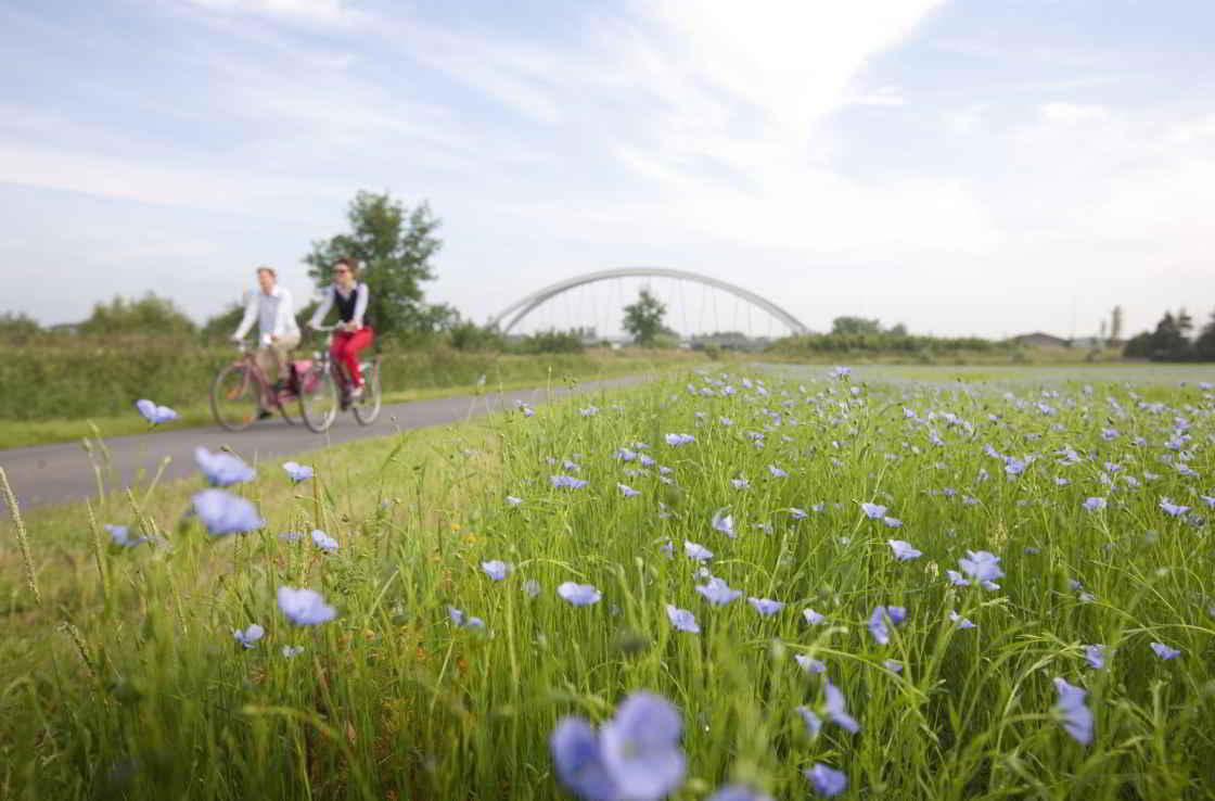 Vergezicht & fietsers in de Leiestreek